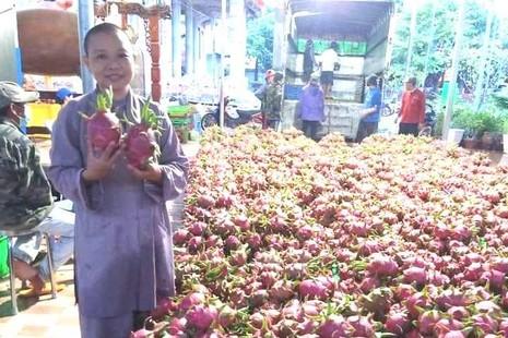 Chùa Phước Minh ủng hộ 30 tấn thanh long, rau củ đến bà con khu cách ly TP.HCM