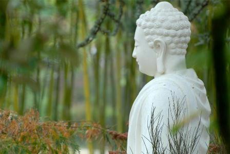 Mừng Phật đến với chúng sanh