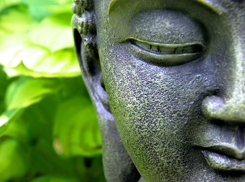 Thiền… giữa đường