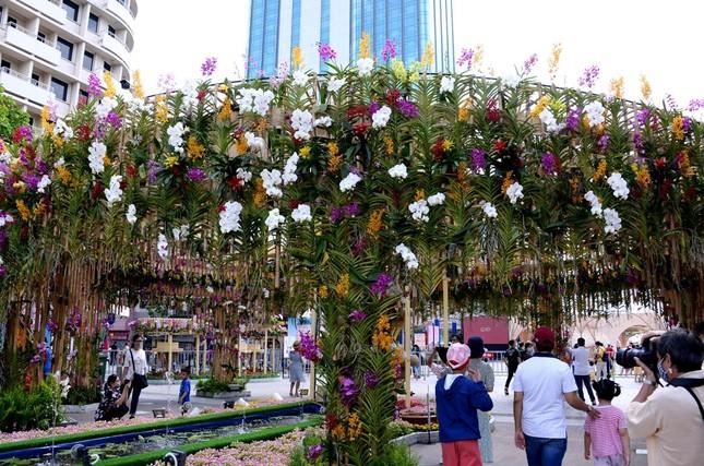 Ngắm Đường hoa Nguyễn Huệ Tết Tân Sửu - 2021 qua ảnh ảnh 3