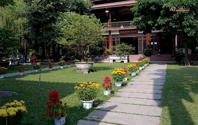 Cảnh chùa Sài Gòn - TP.HCM lung linh trong nắng xuân ảnh 8