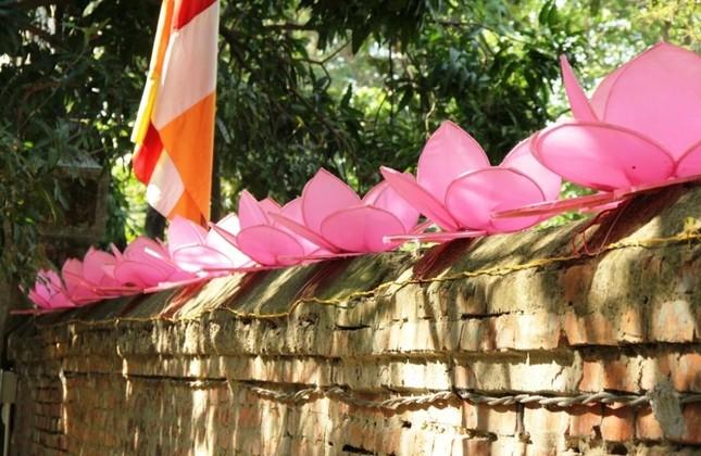 Yên ắng không khí Phật đản ở cố đô Huế ảnh 5