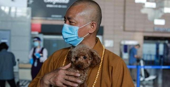 Một vị thầy chăm sóc hàng nghìn động vật bị bỏ rơi tại Trung Quốc ảnh 2