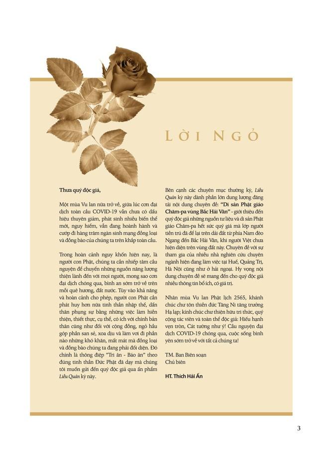 Ấn phẩm Liễu Quán số 24: Di sản Phật giáo Chăm-pa vùng Bắc Hải Vân ảnh 3