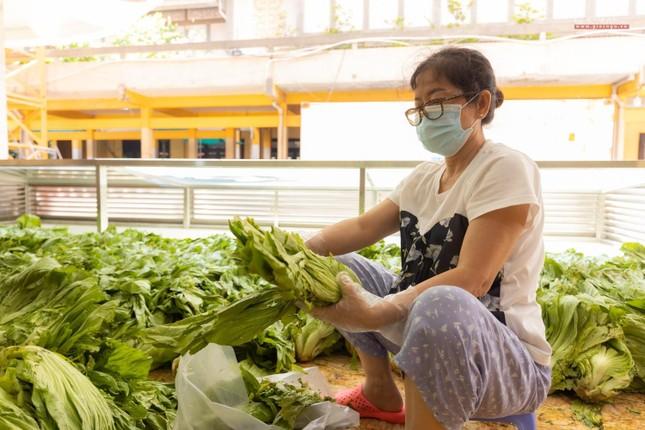 [ẢNH] Một ngày ở bếp chùa phục vụ gần 10.000 suất ăn cho lực lượng tuyến đầu chống dịch ảnh 15
