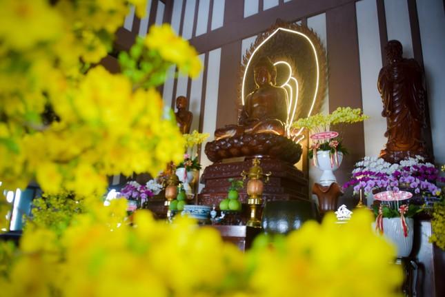 Xuân cửa Thiền: Những góc bình yên trong lòng rộ nở... ảnh 1