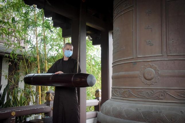 Xuân cửa Thiền: Những góc bình yên trong lòng rộ nở... ảnh 2