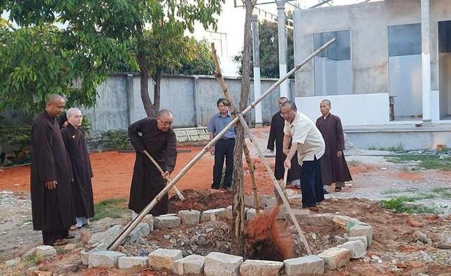 Bình Thuận: Trường Trung cấp Phật học trồng cây xanh trong khuôn viên ảnh 1
