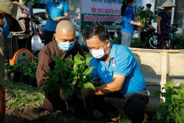 Bình Thạnh: Chùa Pháp Vân tặng 250 cây xanh ảnh 1