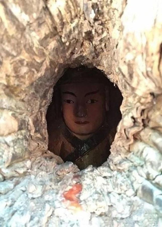 Kỳ lạ bức tượng Phật nằm trong hốc cây hơn 1.000 năm tuổi ảnh 1