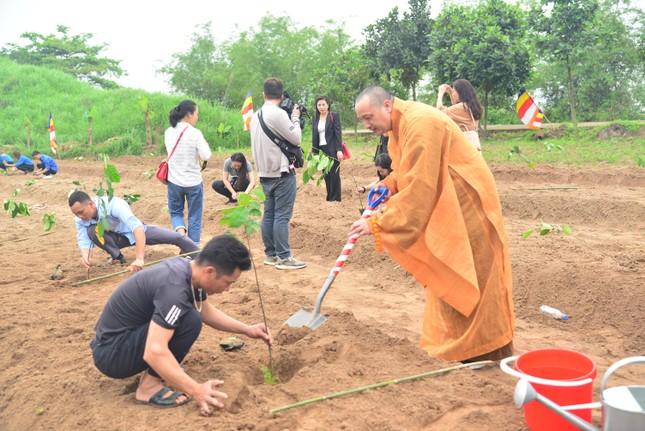 Hải Phòng: Chùa Thắng Phúc trồng hơn 1 nghìn cây xanh ảnh 2