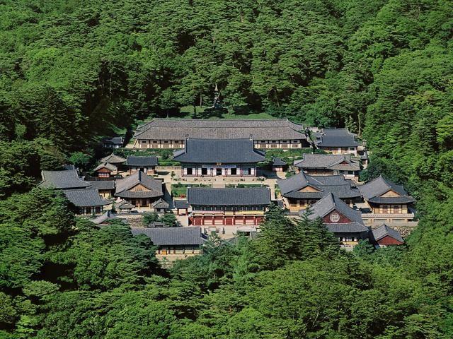 Hàn Quốc: Lần đầu tiên Đại tạng kinh Cao Ly được mở cửa cho công chúng ảnh 1