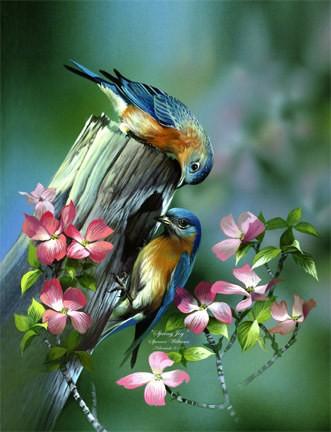 Mùa xuân hé nở trong lòng ảnh 1