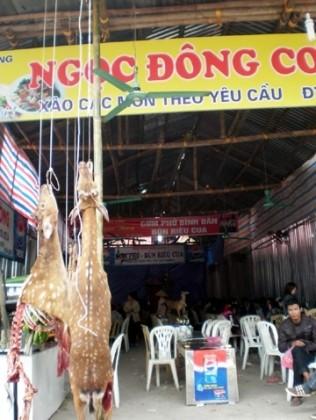Trên 5 vạn lượt người đến chùa Hương ảnh 2