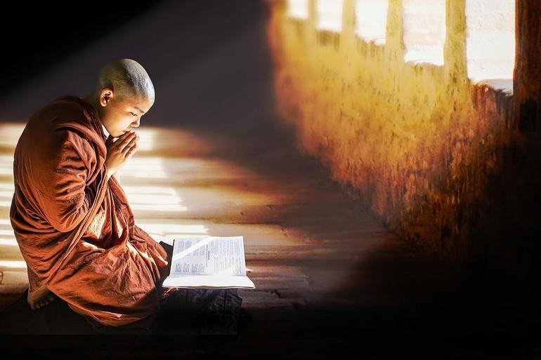Tôn kính Phật và Pháp - Ảnh minh họa