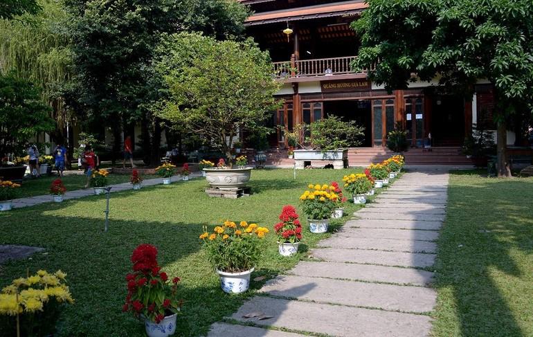 Cảnh chùa Sài Gòn - TP.HCM lung linh trong nắng xuân