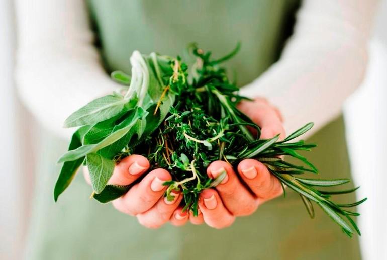 9 loại gia vị và thảo dược tốt cho sức khỏe