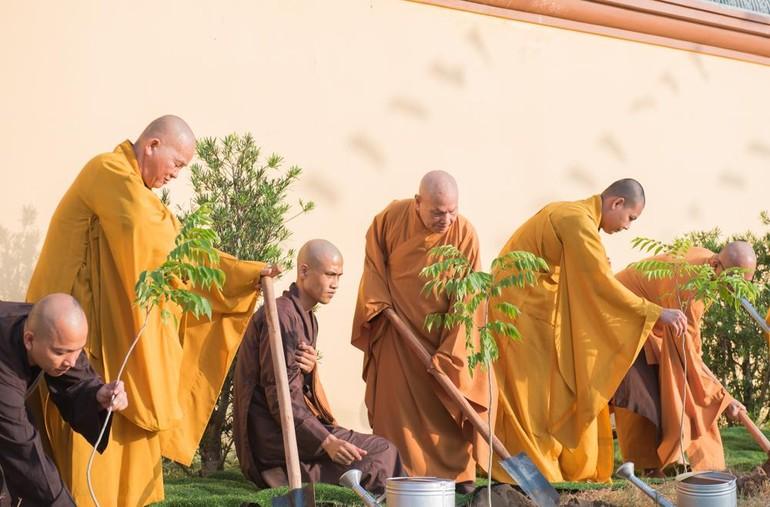 Hòa thượng Chủ tịch Hội đồng Trị sự cùng chư Tăng trồng cây tại tổ đình Phi Lai