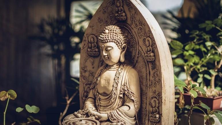 Đức Phật vận chuyển bánh xe Pháp đi khắp nơi để giáo hóa chúng sinh