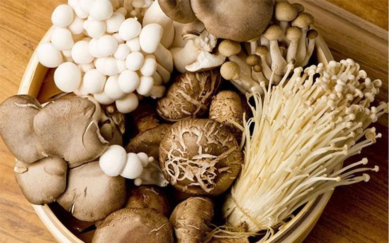Các loại nấm - Ảnh minh họa
